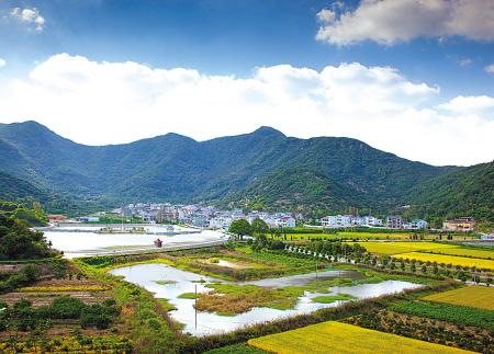 宁波乡镇风景图片